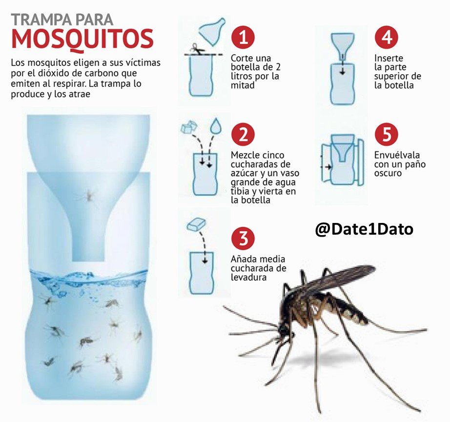 #TrampaParaMosquitos