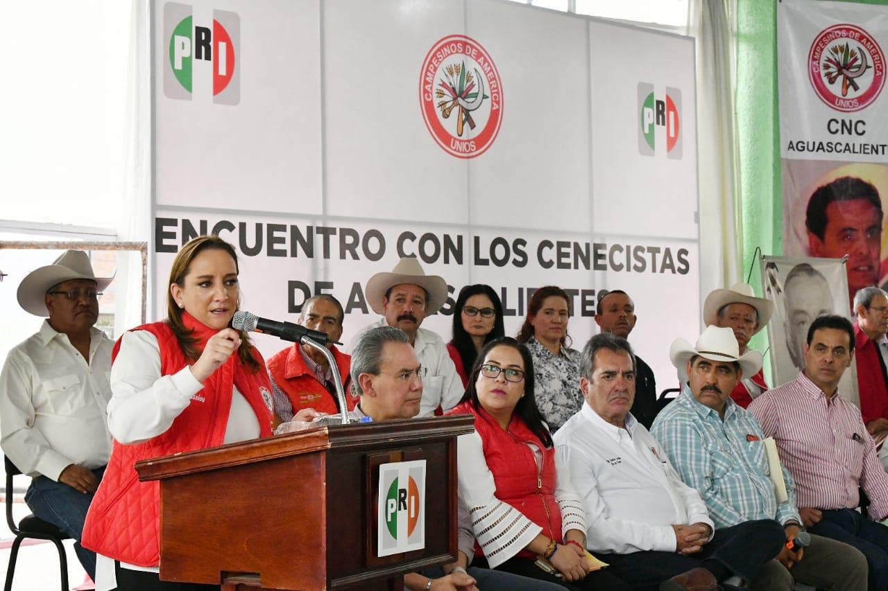 LLAMA RUIZ MASSIEU A FORTALECER AL PRI, PARA SEGUIR SIRVIENDO A LA GENTE