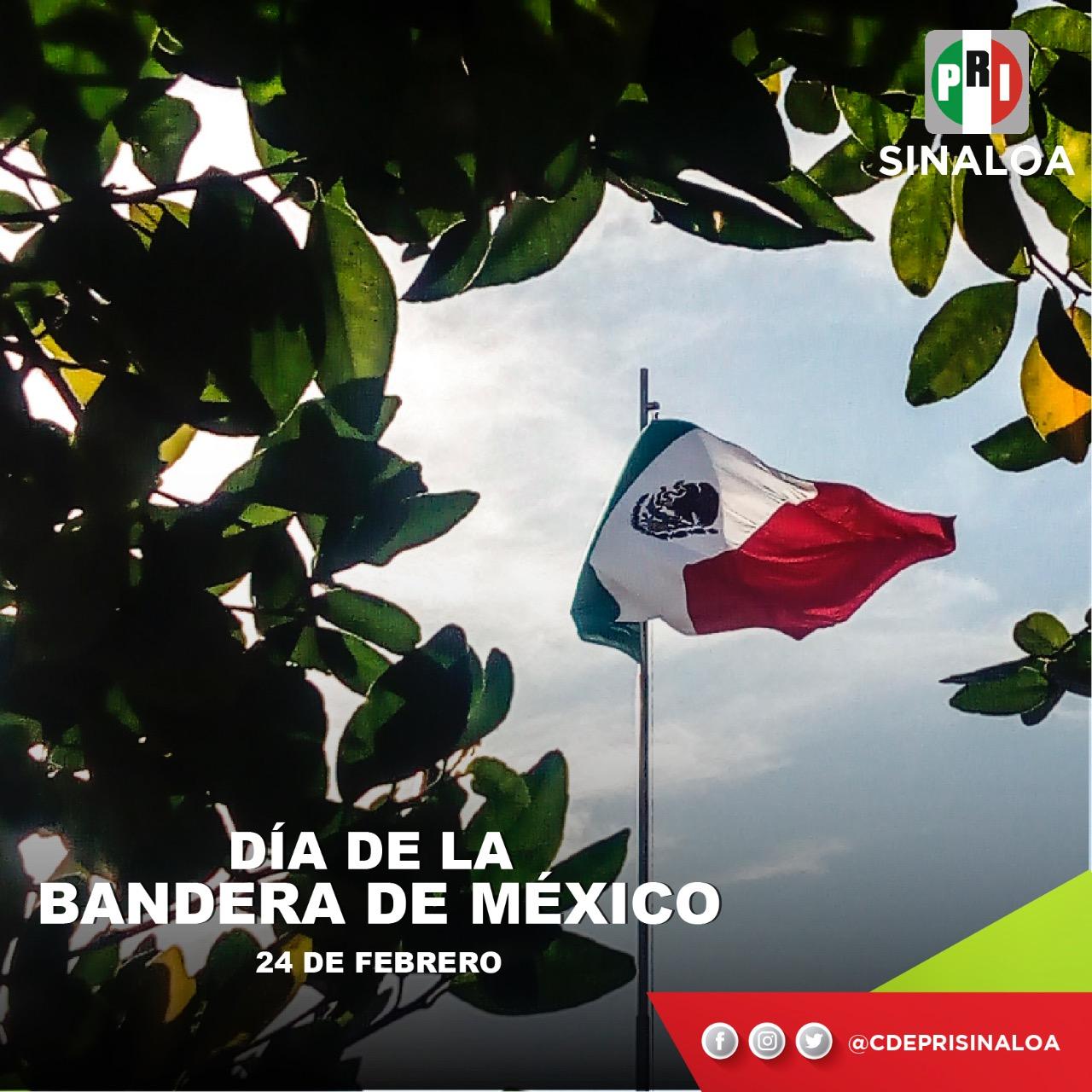 Hoy celebramos con gran orgullo el Día de Nuestra Bandera Nacional #México