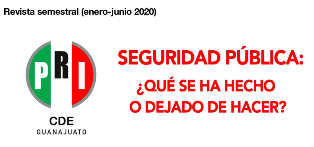 REVISTA 1º SEMESTRE 2020