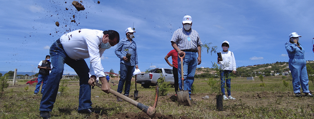 Acompañamos a los nochixtecos a la reforestación en la puerta a la Mixteca oaxaqueña